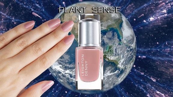 VIDEO: Plant Sense